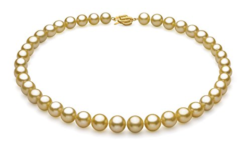 Gold 9.04-11.83mm AAA Quality South Sea 14K Yellow Gold Cultured Pearl Necklace-18 cm