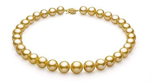 Gold 11.53-15.2mm AAA+ Quality South Sea 14K Yellow Gold Cultured Pearl Necklace-18 cm